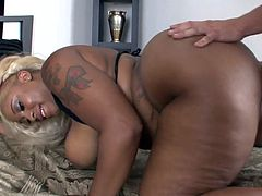 Beautiful BBW Gets Plugged by a Very Ugly Guy