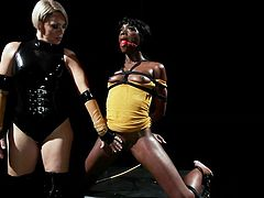 http://img2.sexcdn.net/08/rr/6t_female_domination.jpg