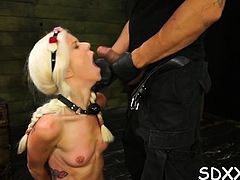 Tied up gal gets her cunt destroyed in bdsm scenery