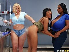 Instead of washing dirty dishes, these slutty dishwashers wash each other's tits, asses and pussies with their own tongues... This hot interracial lesbian threesome will instantly drive you crazy! Their pussies are so wet and juicy, and their saggy tits are so huge... Fucking hot!
